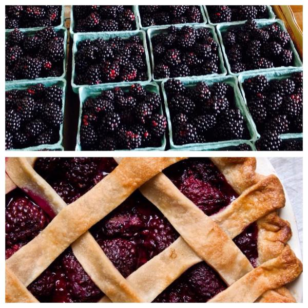 Fresh blackberries from Vanzant's make an amazing pie! Who wants ice cream on theirs?